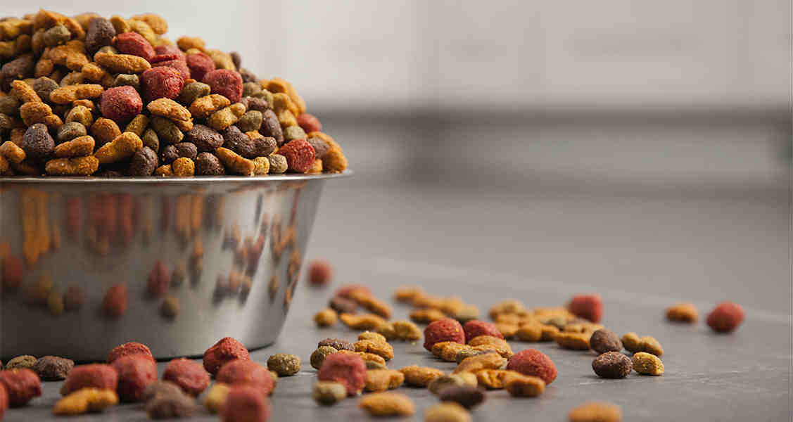 The Downside to Measuring Cups for Pet Food