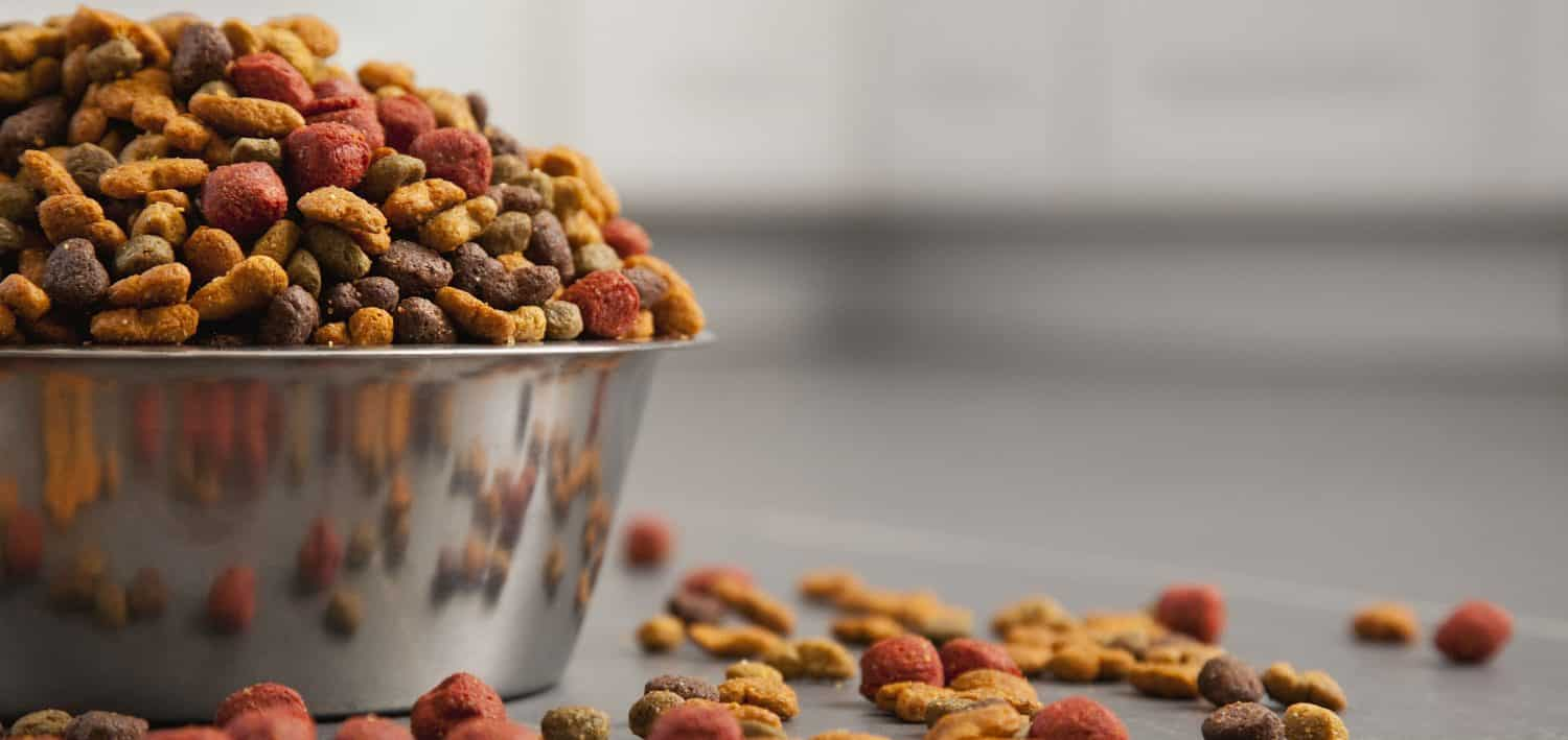 Can veterinary diets for dogs be fed with human food?