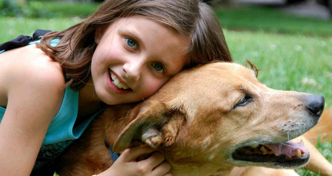 5 Back-to-School Tips for Pets