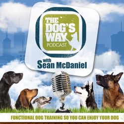 The Dog's Way podcast cover art