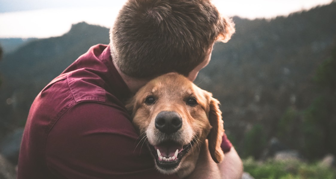 Where can I find help for grieving pet owners?