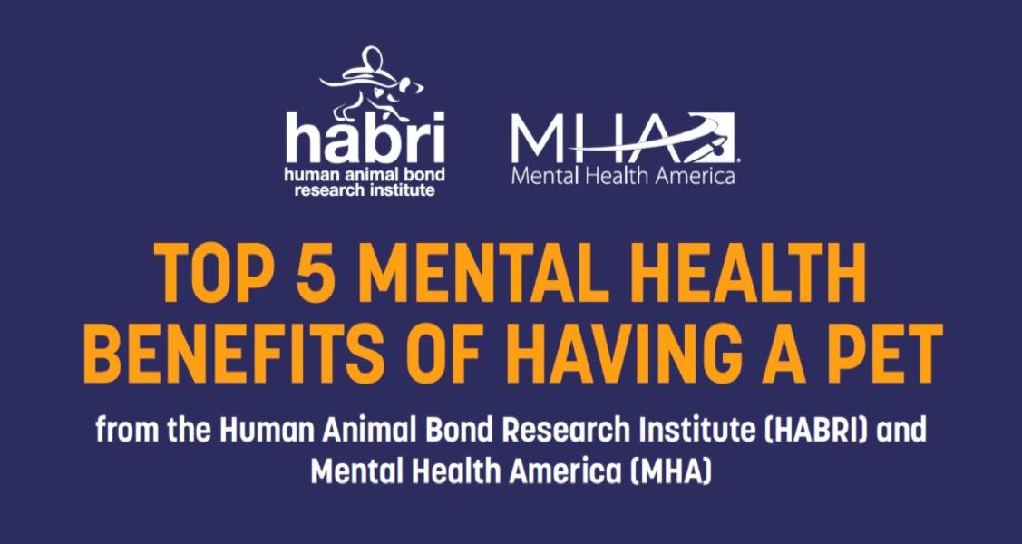 Top 5 Mental Health Benefits of Having a Pet
